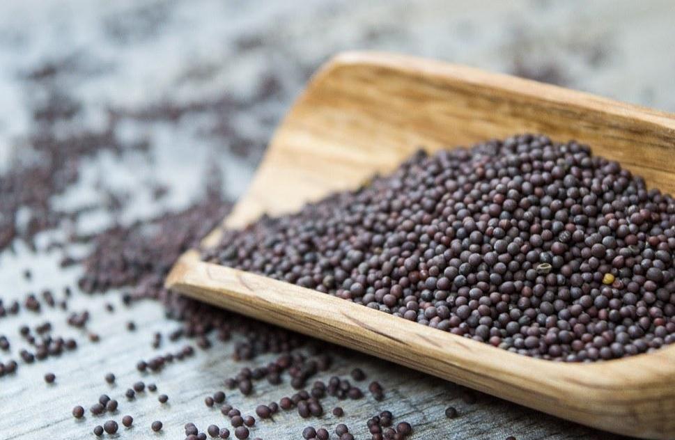 Mustard-seeds-3