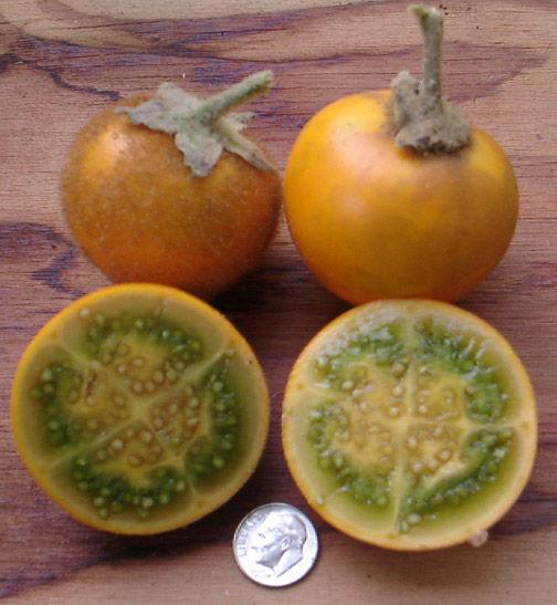 Naranjilla-cut
