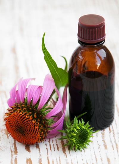 Narrowleaf-Coneflower-Tincture
