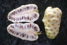 Noni-fruit-cut