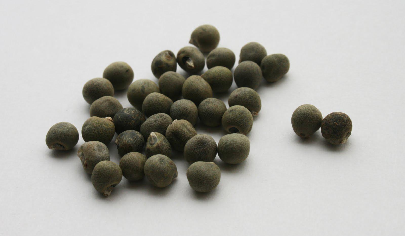 Okra-seeds