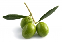 Olive fruit raw-Green Olive