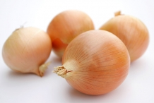 Onion-bulbs