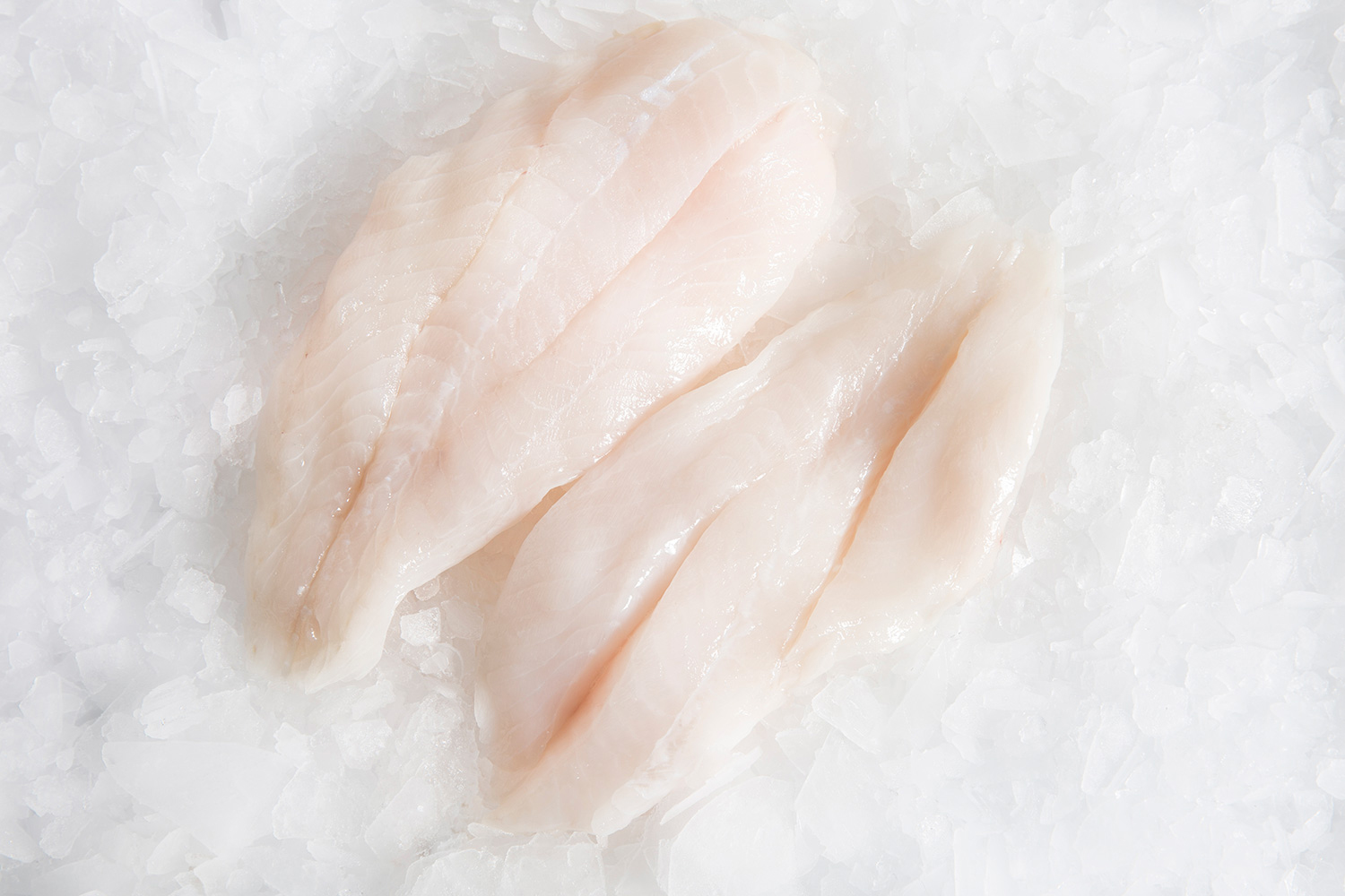 Orange-Roughy-fillets