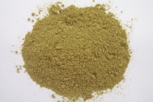 Oregano-powder
