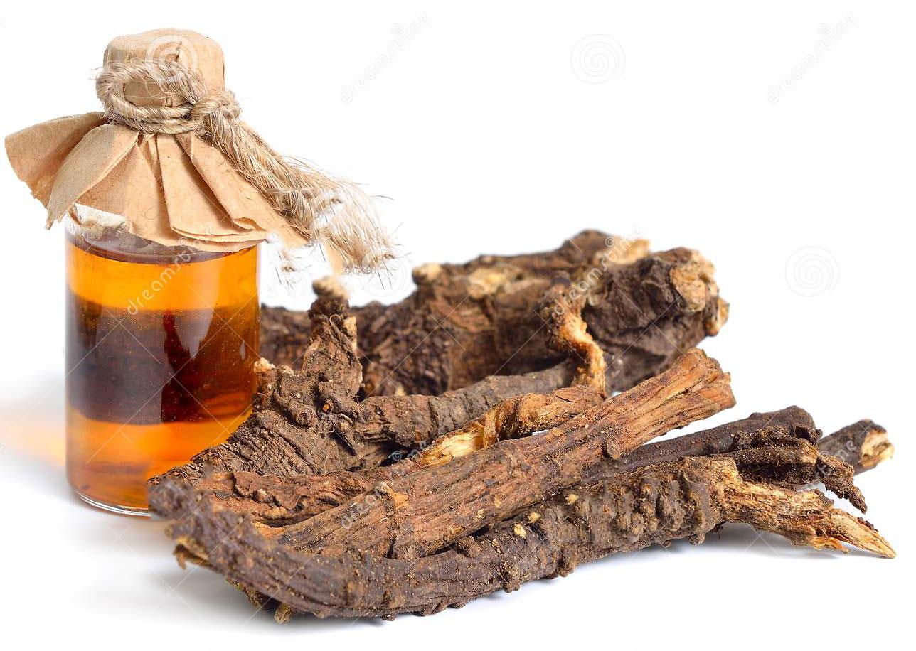 Osha-roots-oil