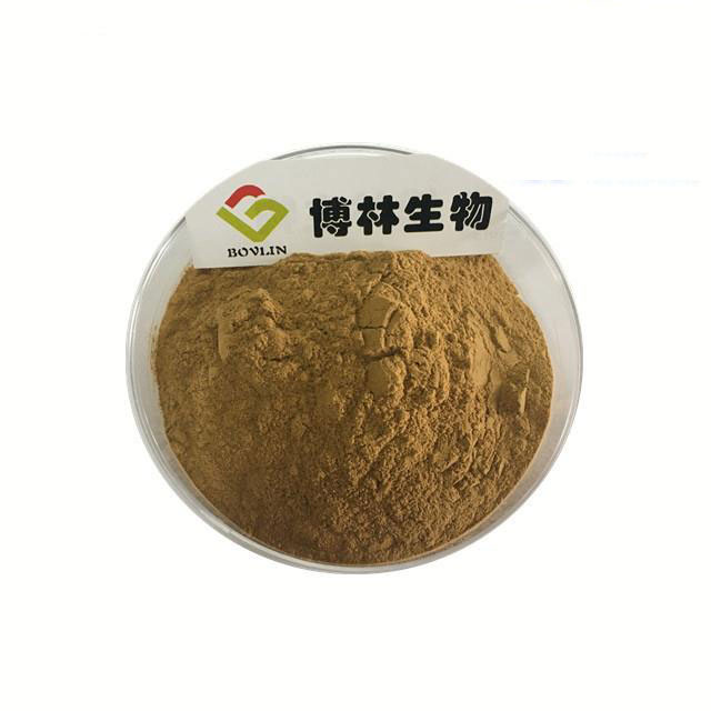 Root-powder-of-Ox-knee