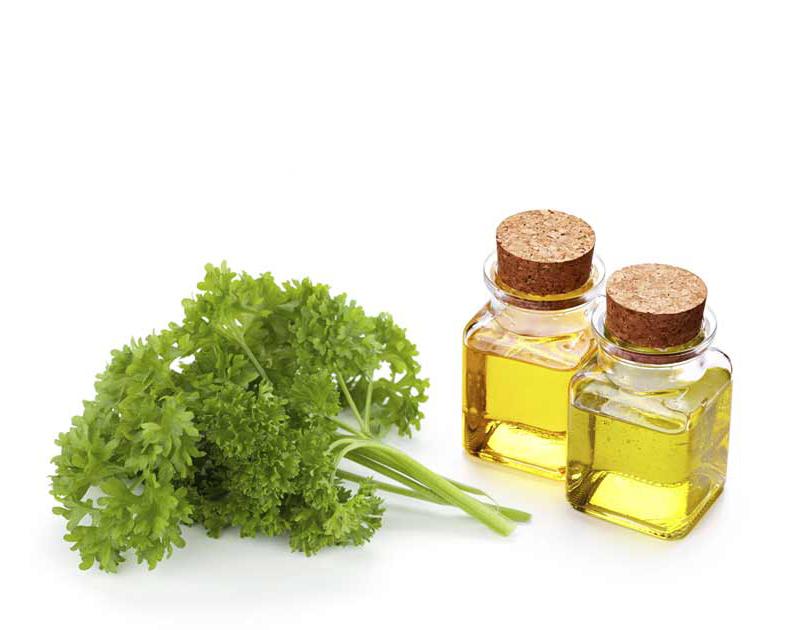 Parsley-seed-oil