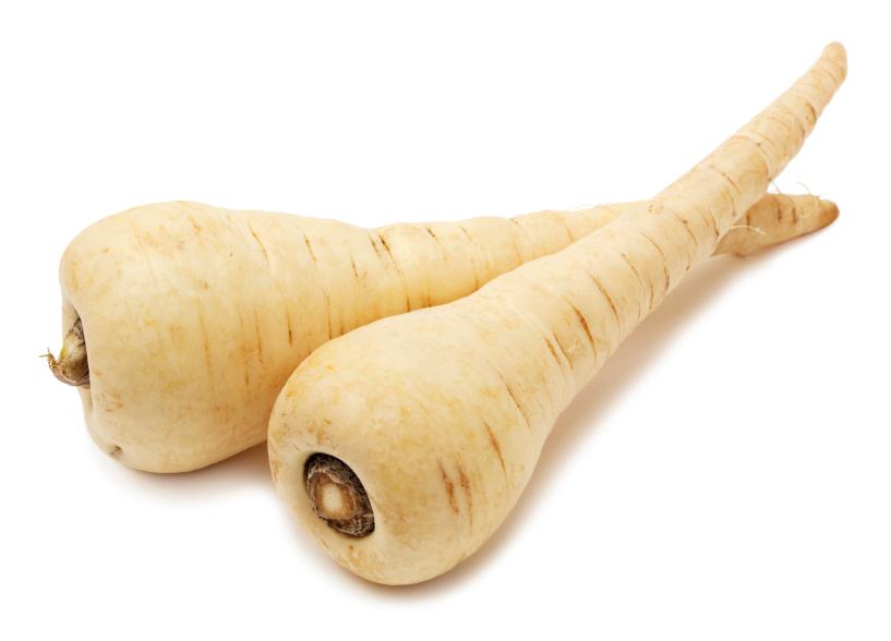 Parsnip-root