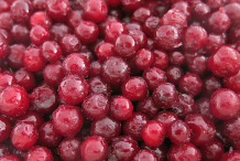 Collected-Partridgeberry