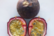 Ripe-Passion-fruit