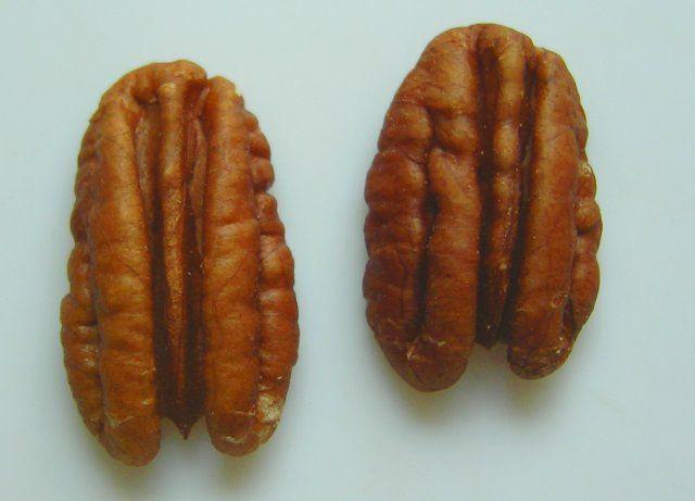 Pecan-nut-halves