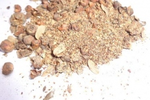 Seeds-of-Peepal-tree