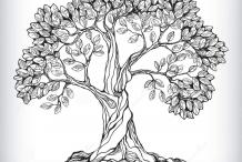 Sketch-of-Peepal-tree