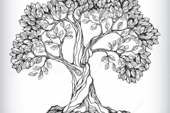 Sketch-of-Peepal-tree
