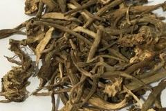 Dried-Peking-spurge-root