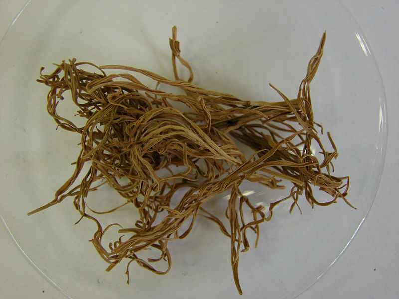 Dried--Pheasant's-Eye-herb