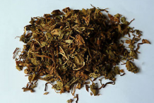 Dried-Pilewort