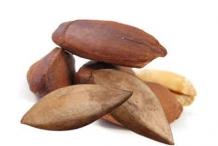 Pili-nut