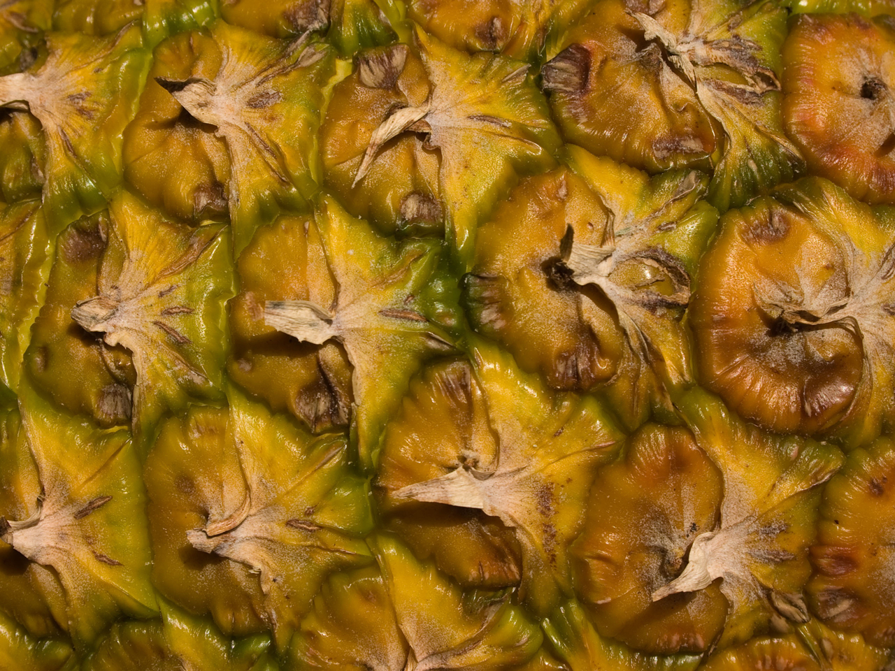 Close-view-of-pineapple-skin