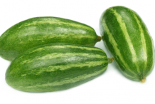 Pointed-gourd