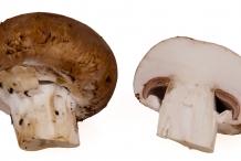 Half-cut-Portobello-mushroom