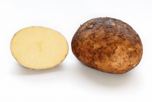 Half-cut-potato