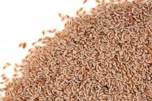 Psyllium--Seeds