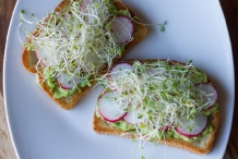 Avocado-Radish-sprouts