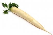 Radish-root