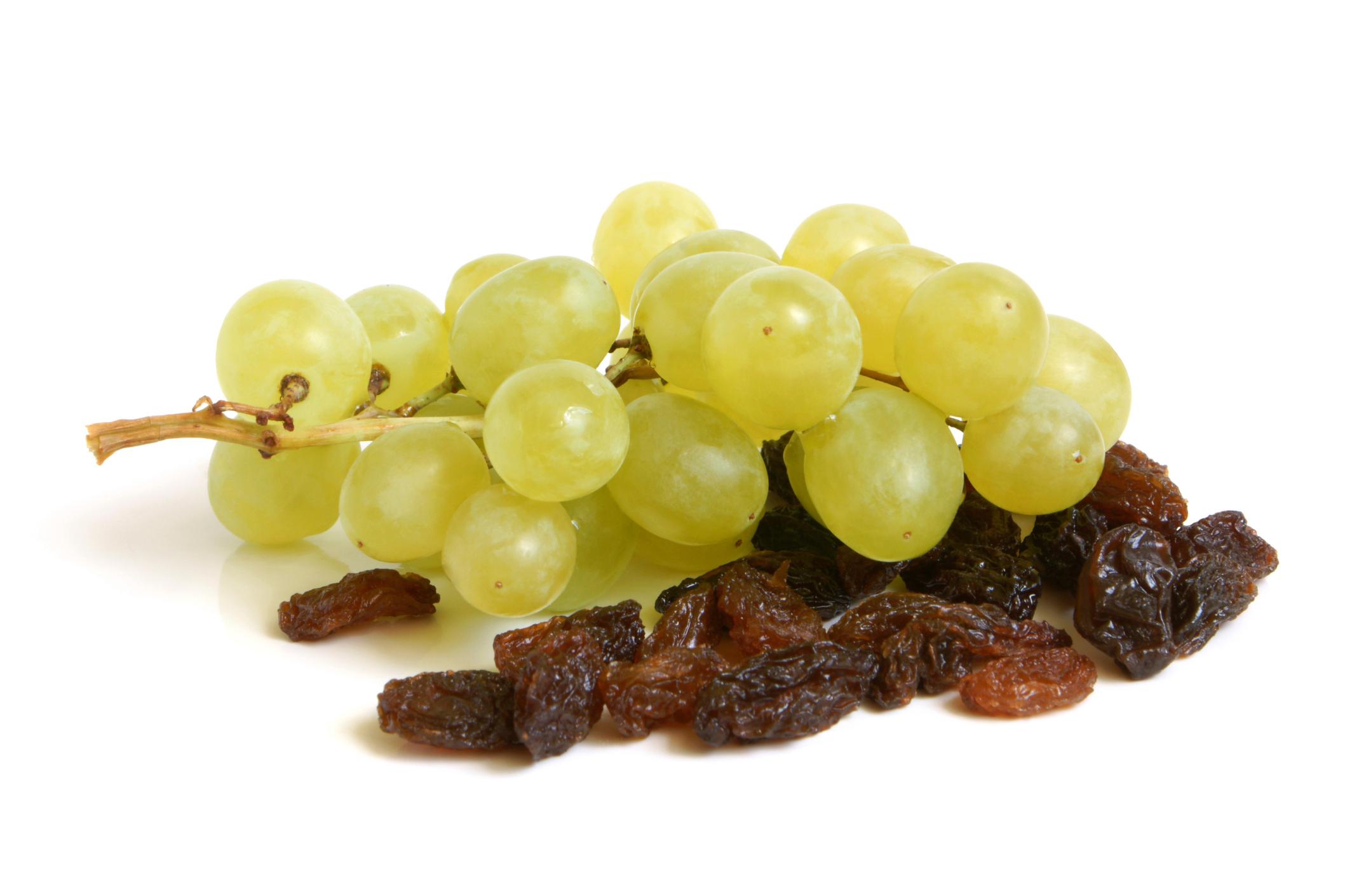 Raisins-10