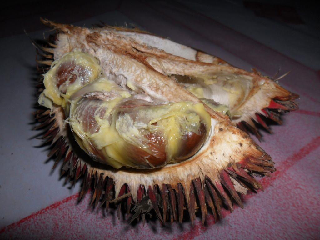 Half-cut-Red-Durian-fruit