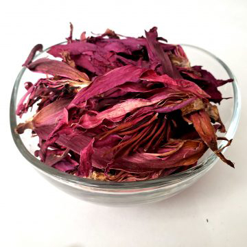 Dried-flowers-of-Red-Water-Lily