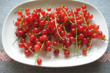 Redcurrant-on-the-plate