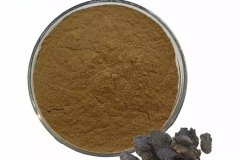 Root-Powder-of-Rehmannia