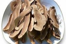 Dried-Reishi-mushroom