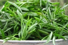 Collected--Rock-Samphire