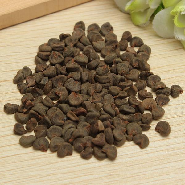 Roselle-seeds