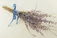 Dried-Flowers-of-Russian-Sage