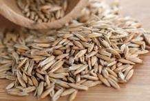 Rye-grains