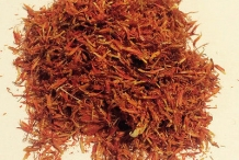 Safflower-dried