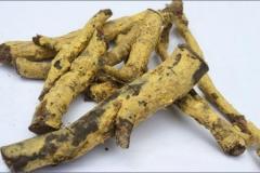 Salacia-reticulata-roots