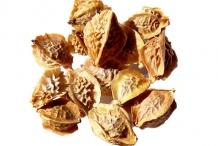 Seeds-of-salad-burnet