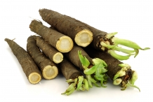 Salsify-roots