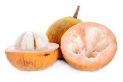 Santol-fruit