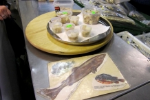 Fermented-Shark-meat