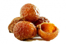 Soap-Nut
