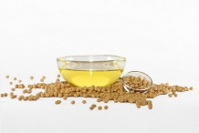 Soybean-oil-Soja hispida