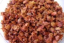 Dried-flowers-of-Spanish-Cherry