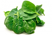 Leaves-of-Spinach
